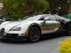 bugatti-veyron-legend-ettore-03