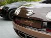 bugatti-veyron-legend-rembrandt-03