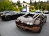 bugatti-veyron-legend-rembrandt-40