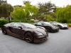 bugatti-veyron-legend-rembrandt-41