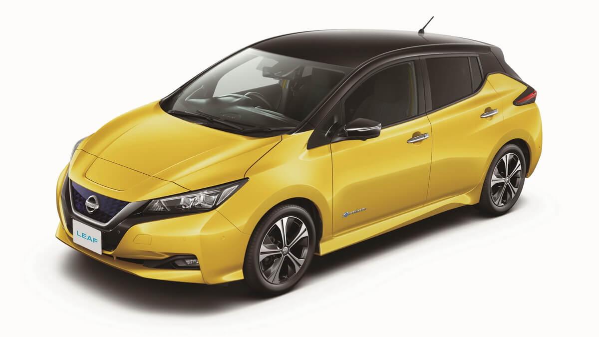 Nissan Leaf mk2 2018